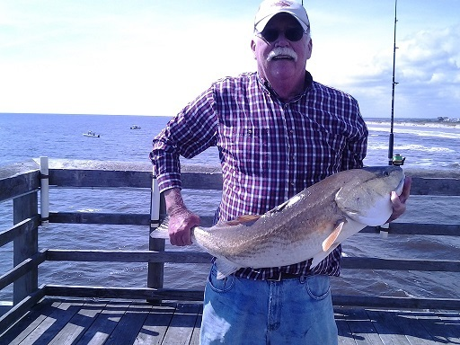 RED DRUM HENRY2 2016